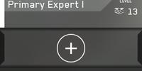 Primary Expert