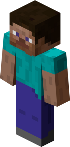 File:Minecraft Player.png