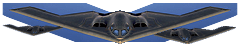 File:Iw5 cardtitle stealth bomber.png