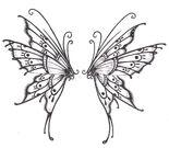 Butterfly-fly-away-108543