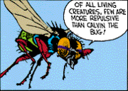 Calvin the Bug fly 1