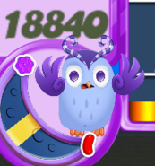 IMG 0178