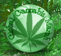 File:Global Cannabis March 2.jpg