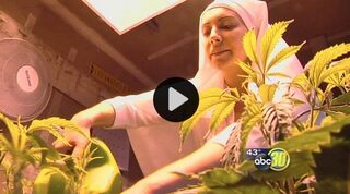 Merced cannabis nun 2