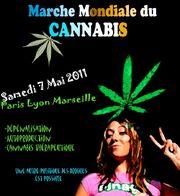 France 2011 GMM 12