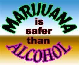 File:Marijuana is safer than alcohol.jpg