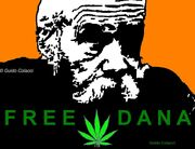 Free Dana Beal 3