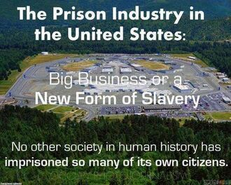US prison industry. New form of slavery