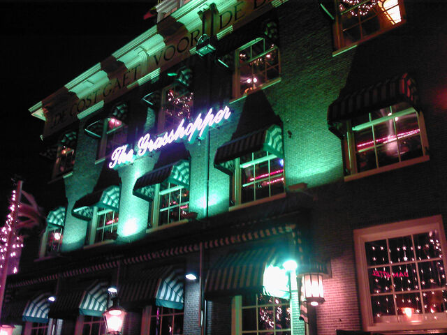 File:Amsterdam. The Grasshopper. By night. 1 January 2007.jpg