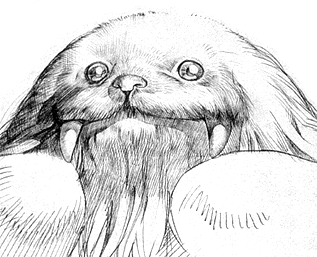 File:SasquatchSketch.png