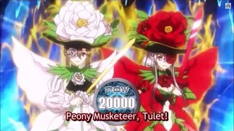 (Legion Mate) Cardfight!! Vanguard Peony Musketeer, Martina & Peony Musketeer, Thule 'Legion' - HD-0