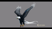 Pan's Eagle Form