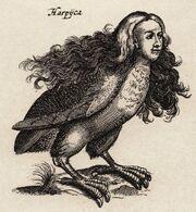 Harpy - 01