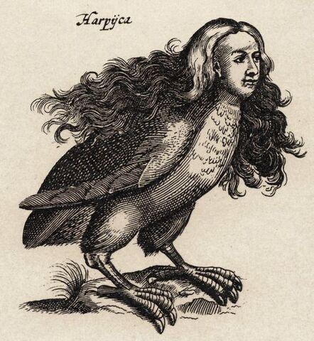 File:Harpy - 01.jpg