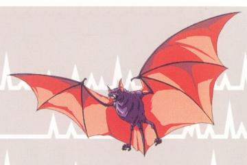 File:RoB Phantom Bat.JPG