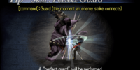 Perfect Guard