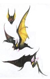Birdtypebat