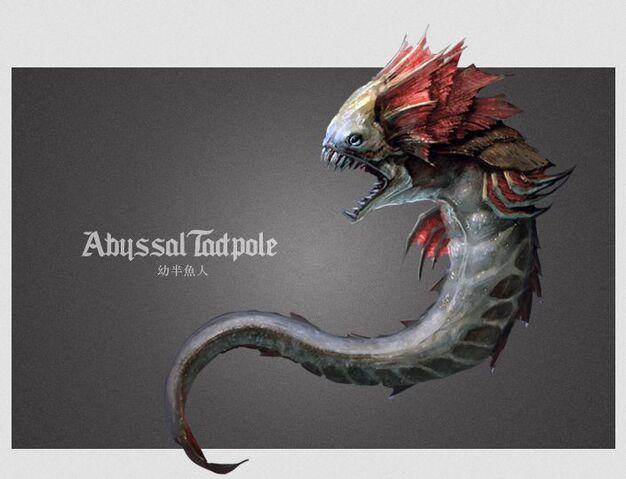 File:Abyssal Tadpole.JPG