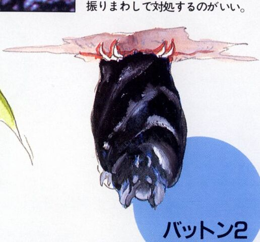 File:44hangingbat.jpg