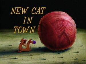 NewCatInTown