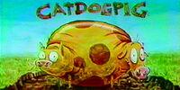 CatDogPig
