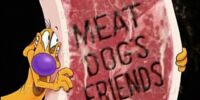 Meat, Dog's Friends