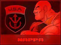 NappaJSA