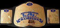 Tag Team Championship HCTP