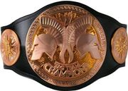 WWE-Tag-Team-Championship display image1