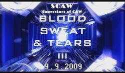 BloodSweatTears3999