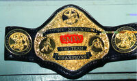 Smokey Mountain Tag Team Champion