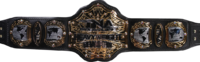 TNXA World Heavyweight Championship