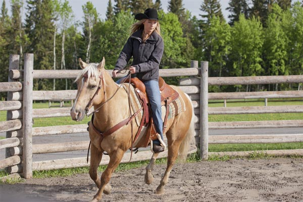 heartland season 5 episode guide