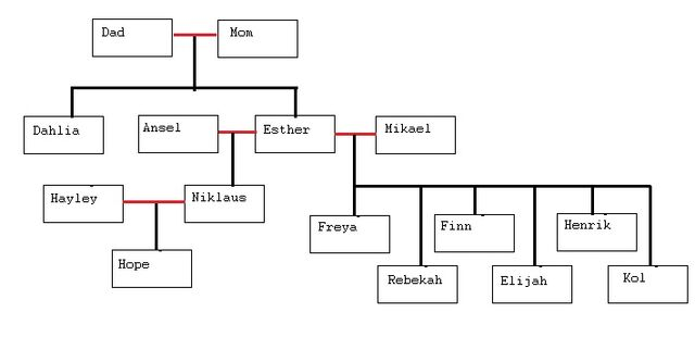 File:VDW Tree.jpg