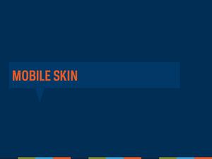 Mobile Webinar 2013 Slide29