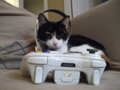 File:Catxbox.jpg