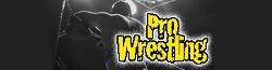 File:Pro Wrestling Wiki.png