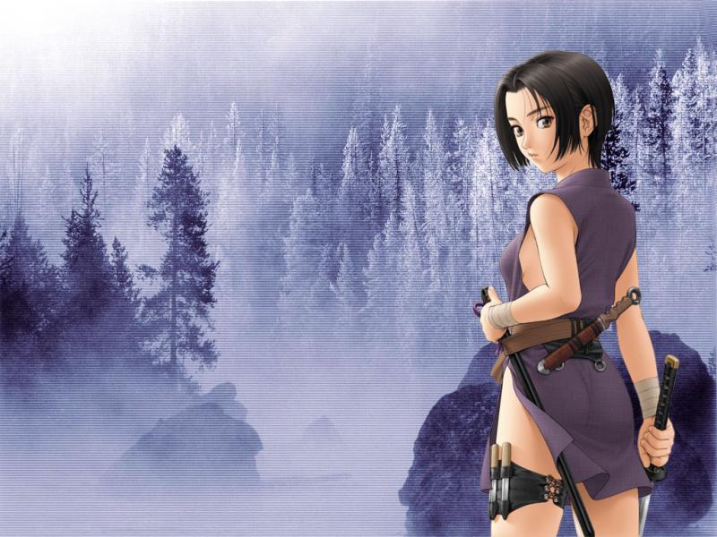 Ninja Girl anime