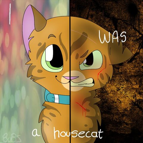 File:Firestar two sides by awkward cat-d6zzuvm.jpg