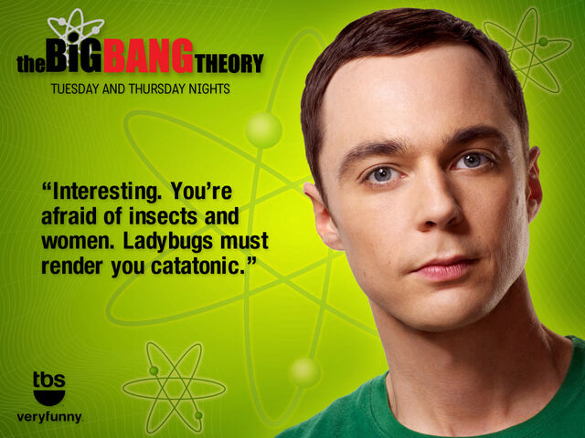 File:Bbt wallpaper sheldon 1024x768 100320110349.jpg