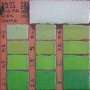 Cuerda verde test.jpg