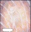 Shiranui1
