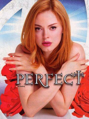 File:Perfect-Rose1.jpg
