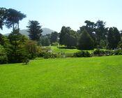 Golden Gate2
