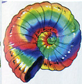 Rainbow Shell.png
