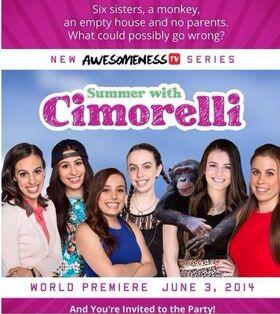 Summer With Cimorelli Series.jpg