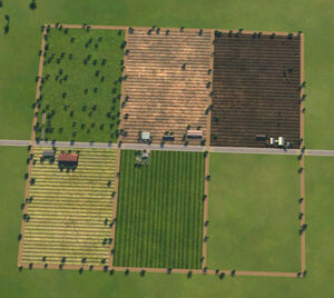 Farms001