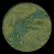 File:Marsh (Civ5).png