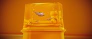 Jelly aquarium