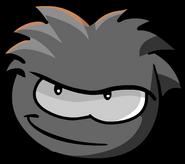 BlackPuffle2 0000000
